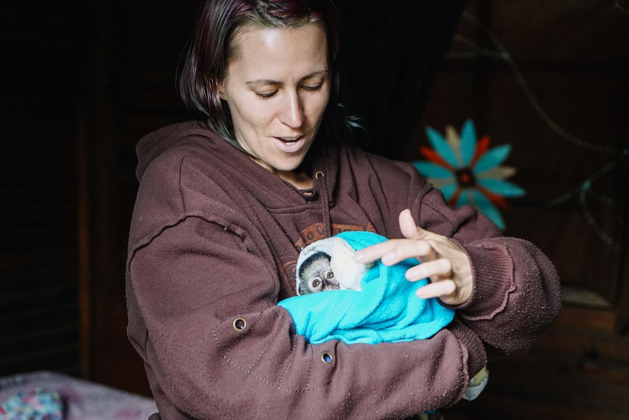 Pflege und resozialisiere verwaiste Affen in Südafrika