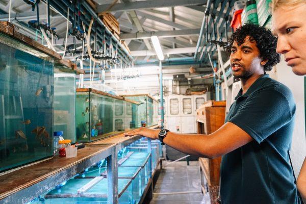 aquarium_kapstadt01