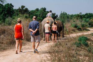 Thailand Projekt Elefanten