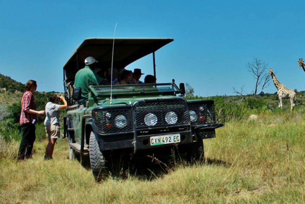 Schütze die Big 5 Südafrikas in einem privaten Game Reserve