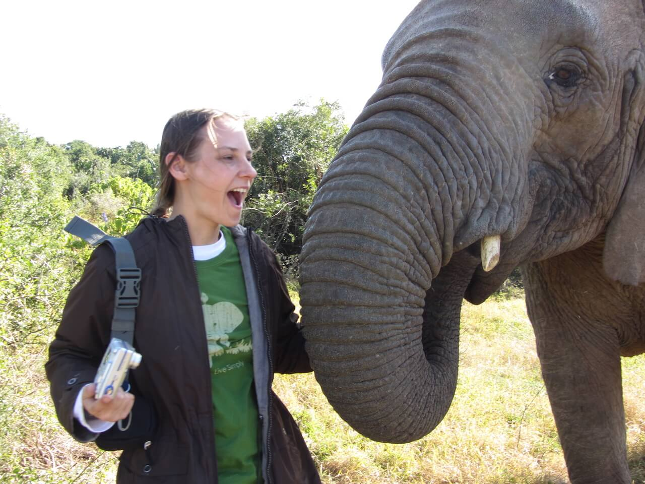 Volunteer with elephants in Thailand: how to do it responsibly