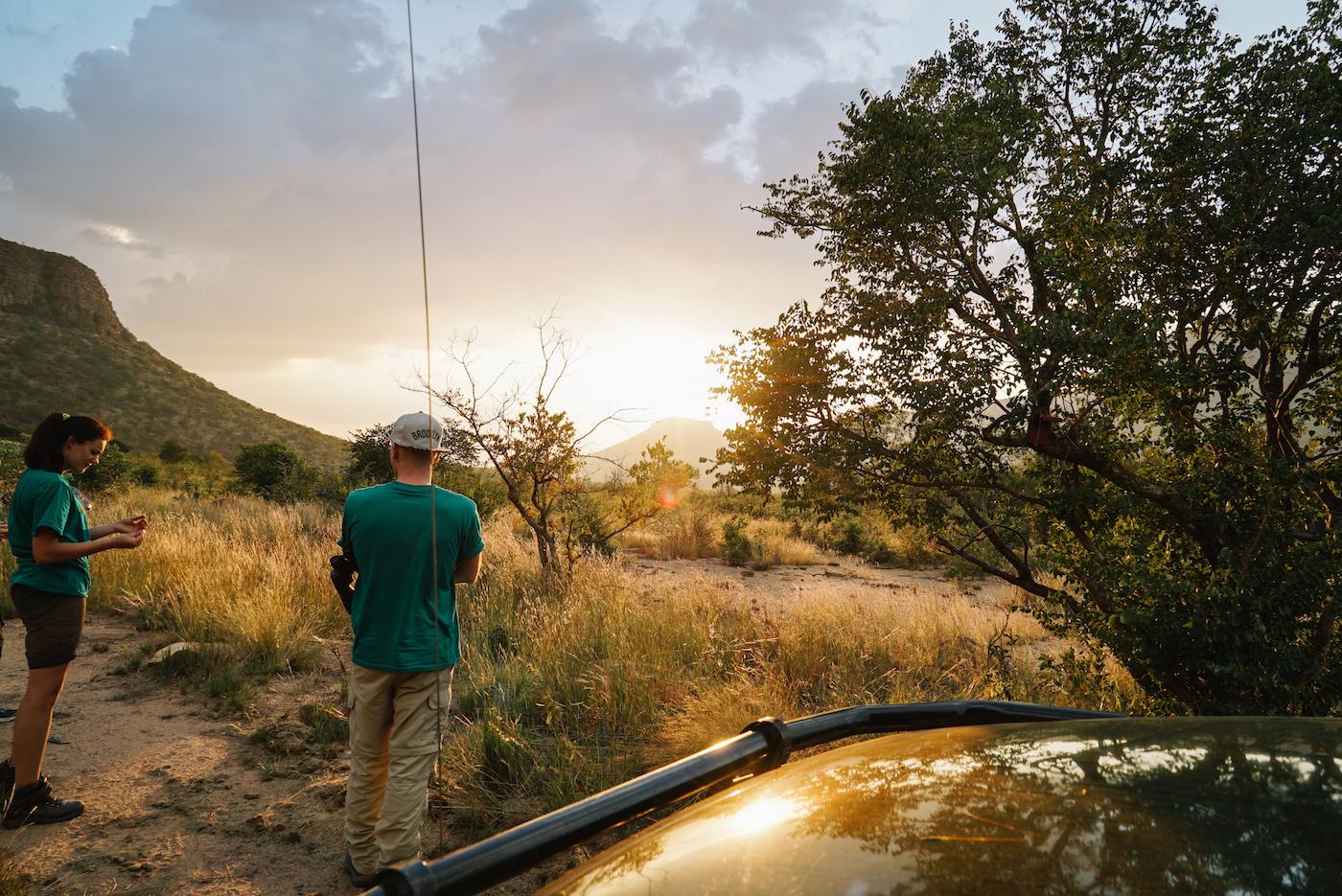 Erhalte ein Reservat der Big Five in Südafrika